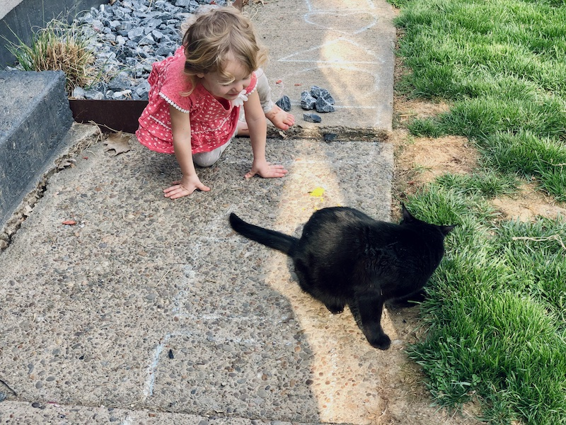 Toddler playing outside with cat