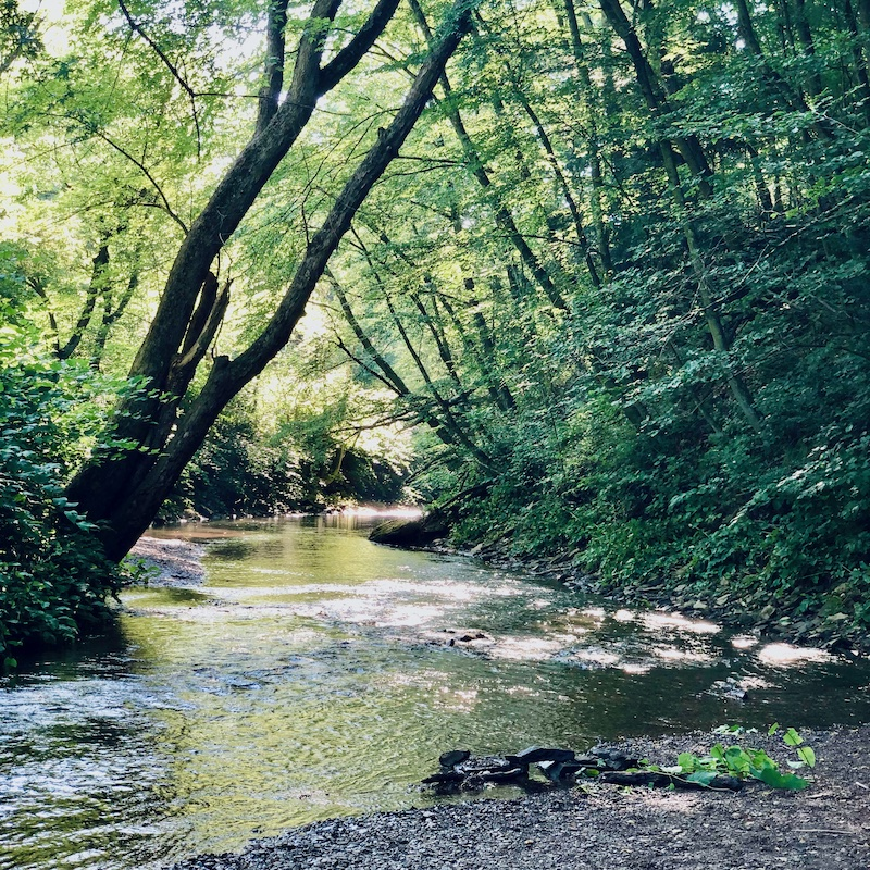 Robinson Run creek at Panhandle Trail in Pittsburgh, PA
