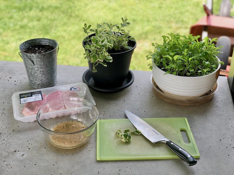 Herbs and meat to marinate on concrete countertop outside