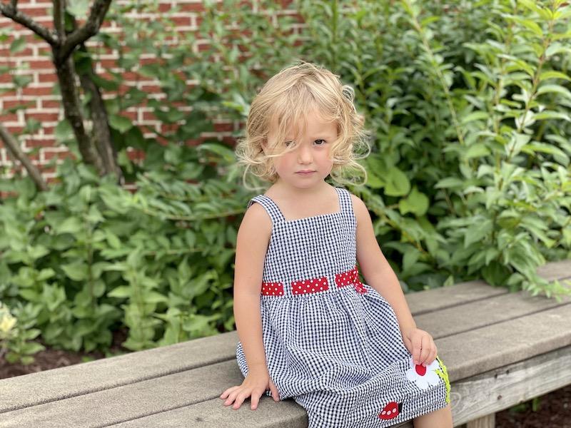Toddler girl wearing Emily Rose ladybug dress
