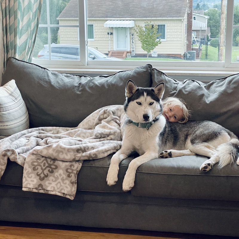 Husky and kid snuggling on couch
